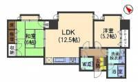 石川県金沢市京町の賃貸マンションの間取り