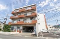 東條ハイツ[301号室]の外観