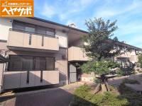 ハイカムールSUWA A[202号室]の画像