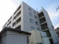 三和第10マンション[5階]の外観