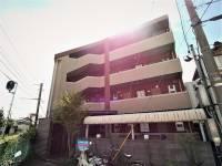 福井県福井市文京5丁目の賃貸マンションの外観