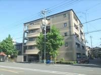 ドゥエル嵯峨の荘[406号室]の外観