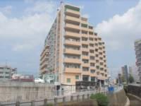 二条プラザ8階[8F号室]の外観