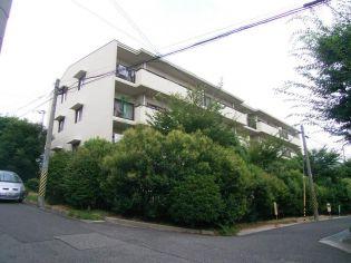 兵庫県神戸市灘区赤坂通8丁目の賃貸マンションの画像