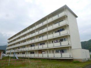 ビレッジハウス山南[1-405号室]の外観