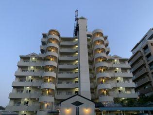 サイコート鈴蘭台 4階の賃貸【兵庫県 / 神戸市北区】