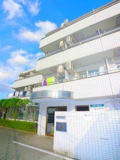 ウインベルソロ朝霞第1 3階の賃貸【埼玉県 / 朝霞市】