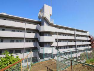 シャルマンコ−ポ朝霞(509) 5階の賃貸【埼玉県 / 朝霞市】