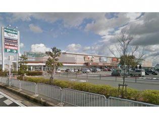 TSUTAYA WAYガーデンパーク和歌山店2321m