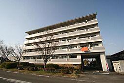 リヴィエールタジマ 1階の賃貸【佐賀県 / 佐賀市】