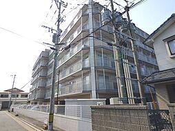 キャンパスシティ太宰府 6階の賃貸【福岡県 / 太宰府市】