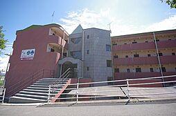 グリーンハートマンション 3階の賃貸【栃木県 / 大田原市】