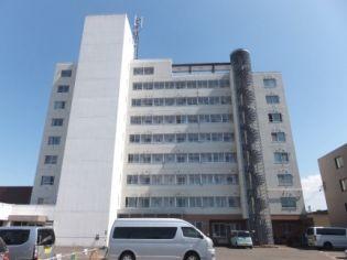 ハイツディオネ 4階の賃貸【北海道 / 札幌市白石区】