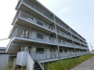 ビレッジハウス成島1号棟 2階の賃貸【群馬県 / 館林市】