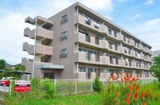 グランパレスフォレスト 1階の賃貸【埼玉県 / さいたま市桜区】