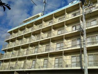 レオパレスエメラルド シティー 5階の賃貸【千葉県 / 袖ケ浦市】