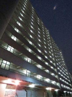 ビレッジハウス品川八潮タワー1号棟[1階]の外観