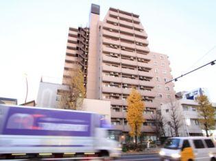 ライオンズプラザ本蓮沼 8階の賃貸【東京都 / 板橋区】