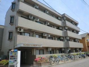 フェニックスマンション小金井 3階の賃貸【東京都 / 小金井市】