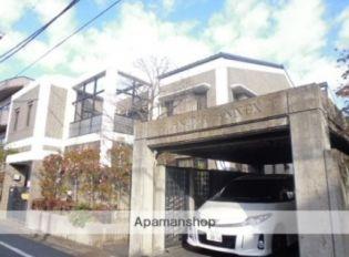 アマヌマアネックス 2階の賃貸【東京都 / 杉並区】