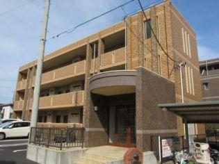 神奈川県川崎市多摩区中野島6丁目の賃貸マンション