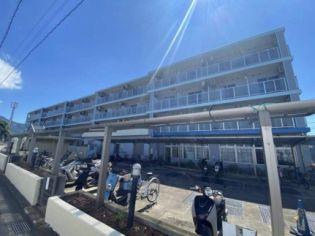 戸川ハイツ 3階の賃貸【神奈川県 / 秦野市】
