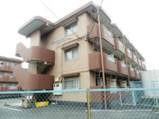 静岡県浜松市中区高丘北3丁目の賃貸マンション