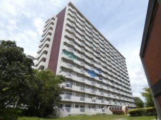 ビレッジハウス浜松タワー 14階の賃貸【静岡県 / 浜松市南区】