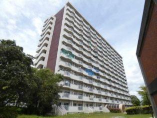 ビレッジハウス浜松タワー 4階の賃貸【静岡県 / 浜松市南区】