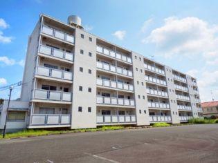 ビレッジハウス逆川1号棟 2階の賃貸【静岡県 / 掛川市】