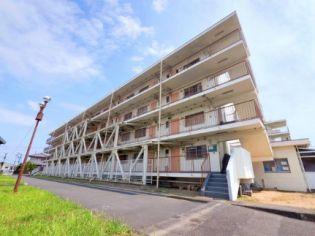ビレッジハウス高畑1号棟 2階の賃貸【静岡県 / 浜松市浜北区】