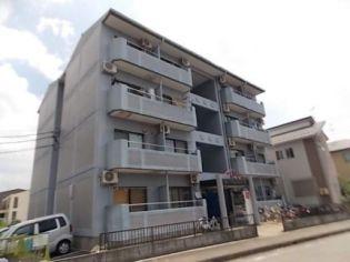ダイヤモンドハウス 3階の賃貸【愛知県 / 丹羽郡大口町】