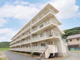 ビレッジハウス八浜1号棟[0206号室]の外観