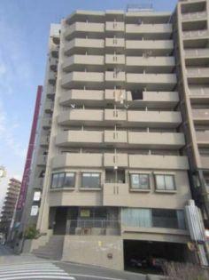グローバル松川 7階の賃貸【広島県 / 広島市南区】