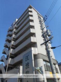 ハイネス江波 8階の賃貸【広島県 / 広島市中区】