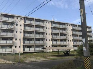ビレッジハウス大門第二1号棟 5階の賃貸【広島県 / 福山市】