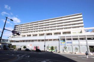 グランアークテラス 5階の賃貸【広島県 / 広島市東区】