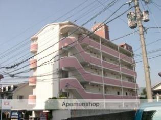 FINE VIEW 1階の賃貸【熊本県 / 熊本市中央区】