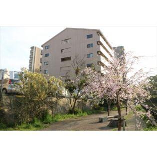 シティマンションカワヅ 5階の賃貸【熊本県 / 熊本市中央区】