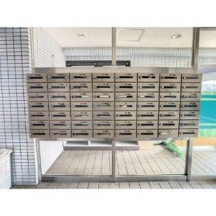 エクセラン南熊本 1階の賃貸【熊本県 / 熊本市中央区】