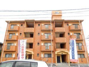 メゾンドール 4階の賃貸【熊本県 / 熊本市南区】