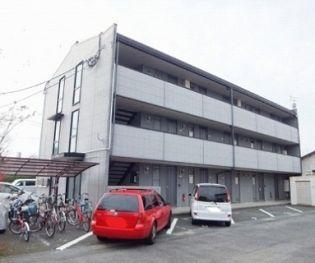 まりんハイツⅢ 3階の賃貸【熊本県 / 熊本市中央区】