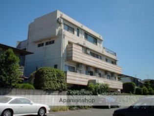 ベロ・ヴィータ 1階の賃貸【熊本県 / 熊本市中央区】