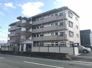 IKM菊陽 4階の賃貸【熊本県 / 菊池郡菊陽町】
