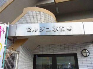 セルジュ水前寺 3階の賃貸【熊本県 / 熊本市中央区】