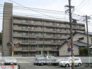ブルーム 5階の賃貸【熊本県 / 熊本市東区】