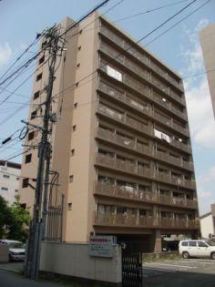 AD藤崎 4階の賃貸【熊本県 / 熊本市中央区】