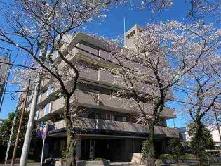 神奈川県相模原市中央区並木3丁目の賃貸マンション