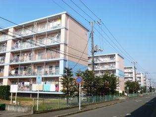 平塚田村第1 2号棟[254号室]