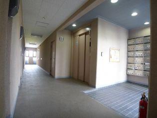 NEO SKY 西田[205号室]